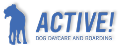Active! Dog Daycare and Boarding, Inc.